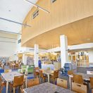 MetalWorks Torsion Spring Ceilings from Armstrong Now Available with Purewood Real Wood Veneers
