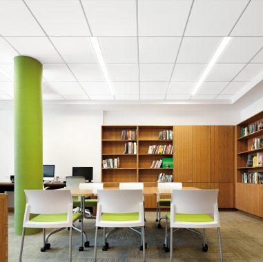 Acoustical on center linear lighting
