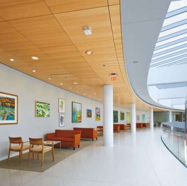 SINGLESPAN Acoustical Corridor System Image  (Swatch)