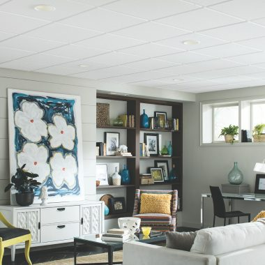 What You Should Know About Alternatives to Drywall Ceilings