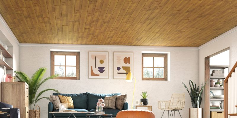 A Ceiling for Every Space