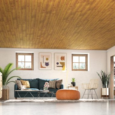 Decorative Ceilings for Every Space