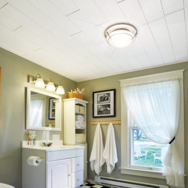 Bathroom Ceilings