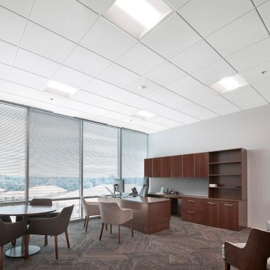 Light Commercial Ceiling Tiles
