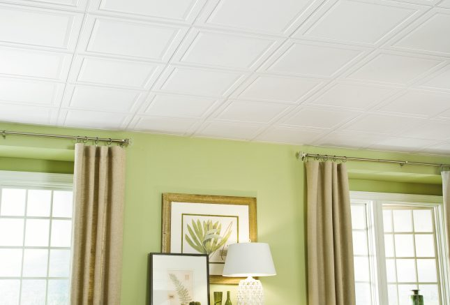 Ceilings for Narrow Grid Featured Media Image