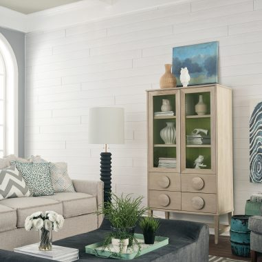 Cool Living Room with Shiplap